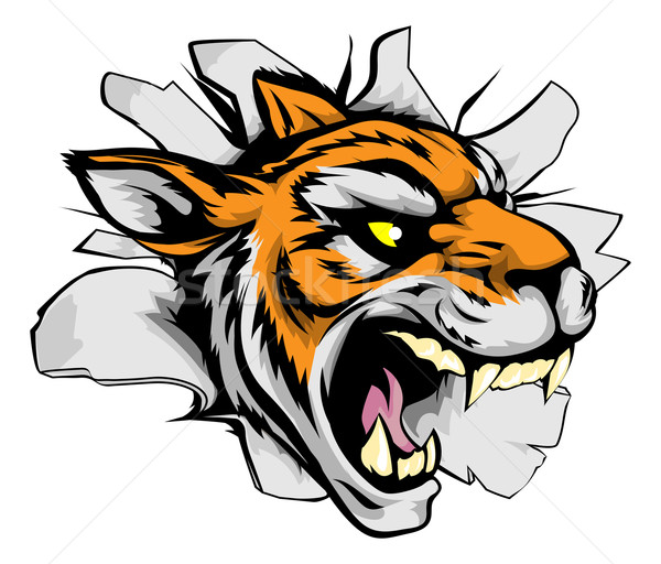 Stock photo: Tiger sports mascot breaking out