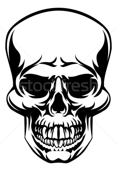 Skull Stock photo © Krisdog