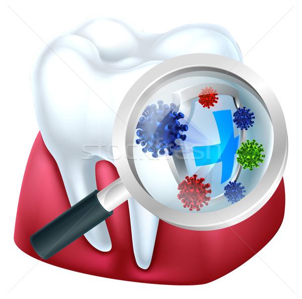 Tooth Protection Stock photo © Krisdog