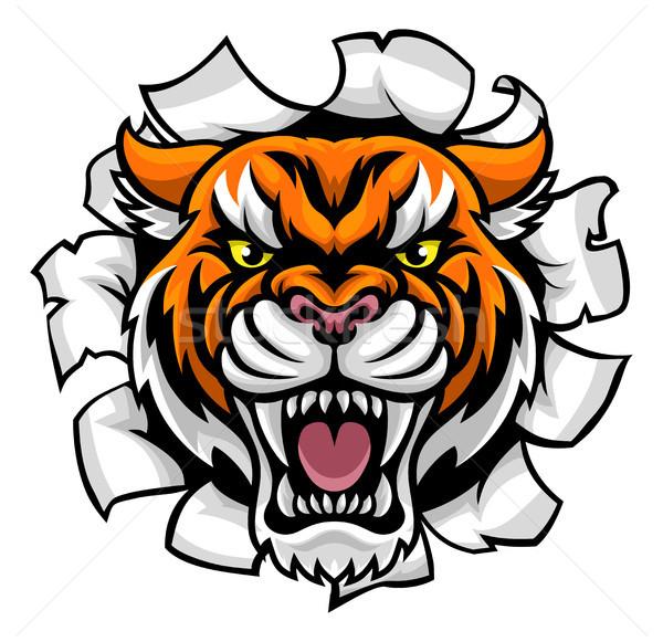 Mérges tigris áttörés állat sportok kabala Stock fotó © Krisdog