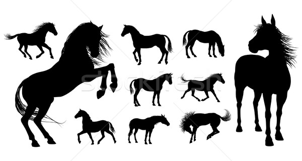 Horse Silhouettes Stock photo © Krisdog