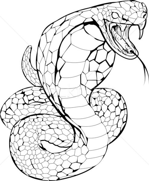 Cobra serpente ilustração preto e branco arte animal Foto stock © Krisdog