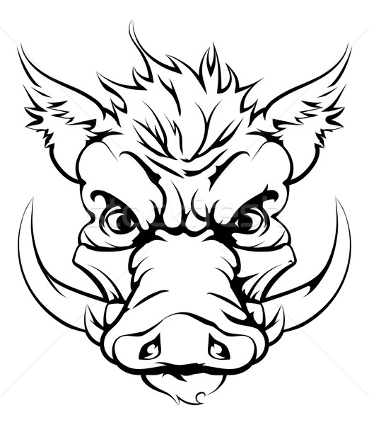 Boar sports mascot head Stock photo © Krisdog