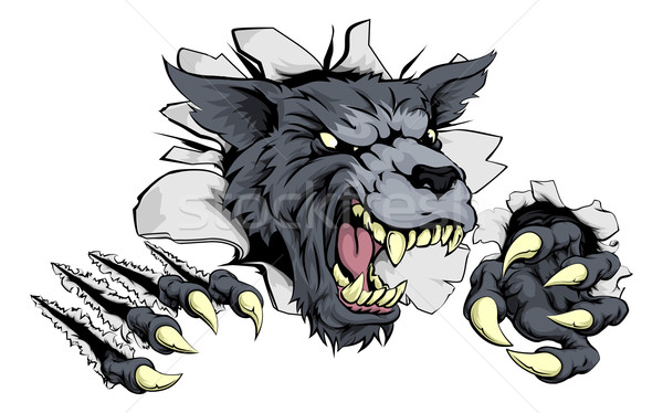 Wolf or Werewolf ripping through Stock photo © Krisdog