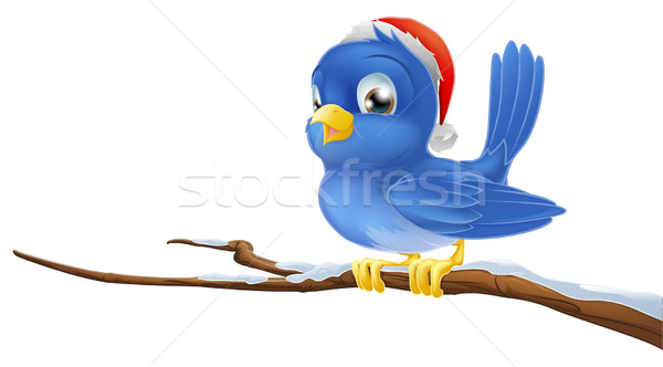 Bluebird in Christmas hat Stock photo © Krisdog