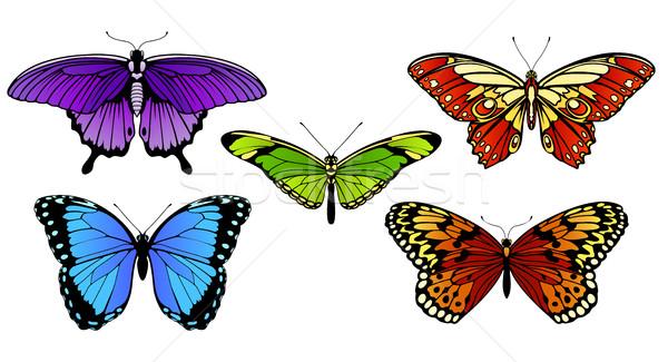 Fluture Set Colorat Fluturi Modă Abstract