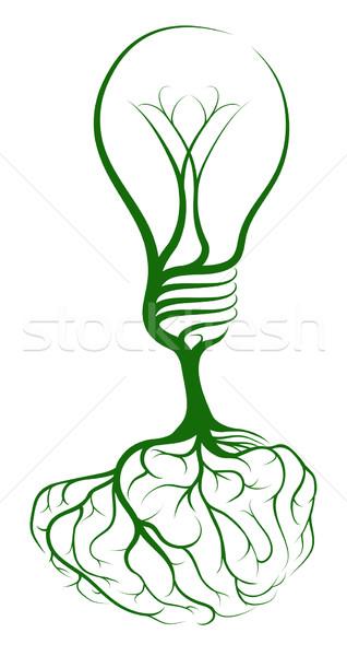 C rebro l mpada rvore crescente forma for Focos para iluminar arboles