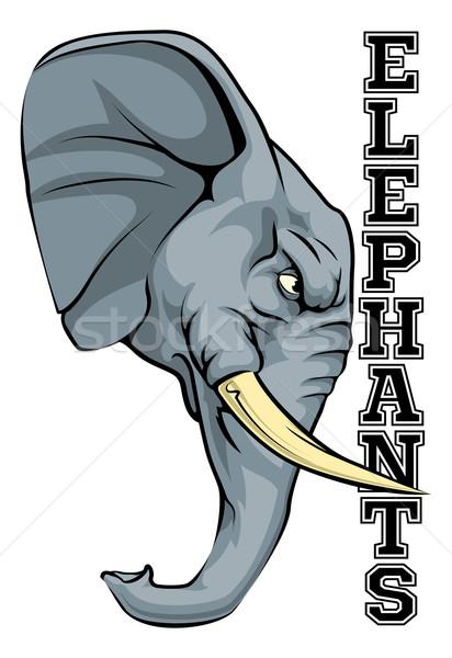 Elefantes mascota ilustración Cartoon elefante equipo deportivo Foto stock © Krisdog