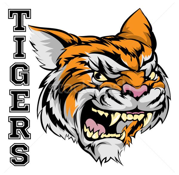 Tigrisek sportok kabala illusztráció tigris fej Stock fotó © Krisdog