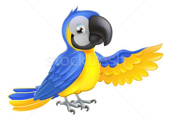 Cute blue and yellow parrot Stock photo © Krisdog