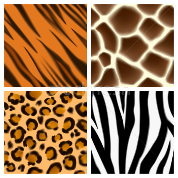 Animal print seamless patterns Stock photo © Krisdog