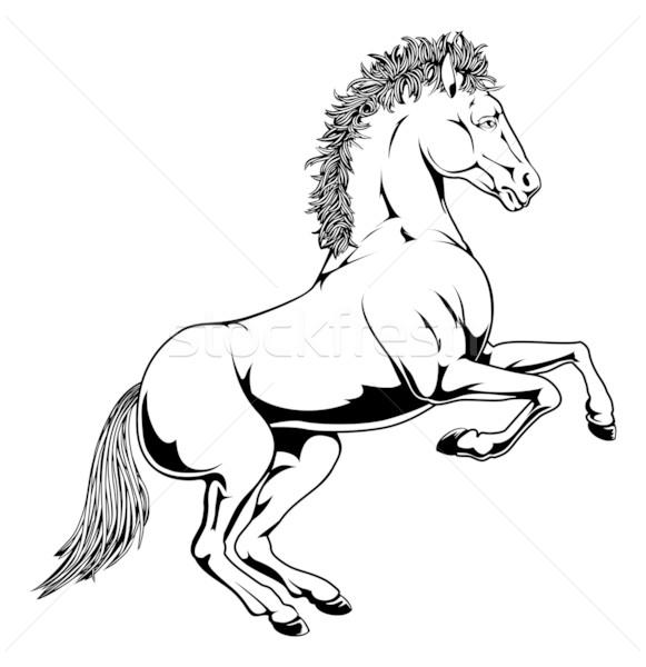 Black and white horse illustration Stock photo © Krisdog