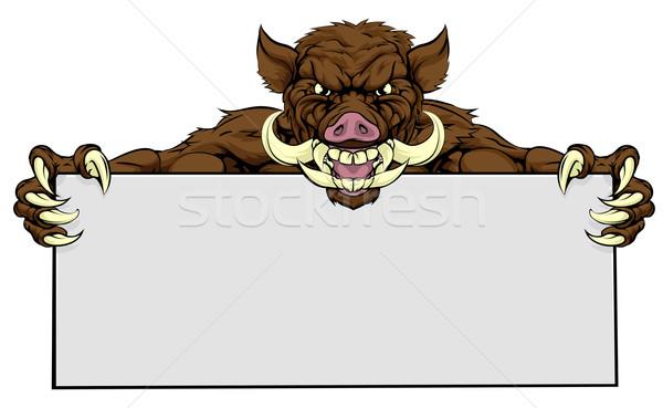 Verraco signo mirando mascota papel Foto stock © Krisdog