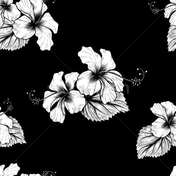Végtelenített trópusi hibiszkusz virágok végtelen minta virág Stock fotó © Krisdog