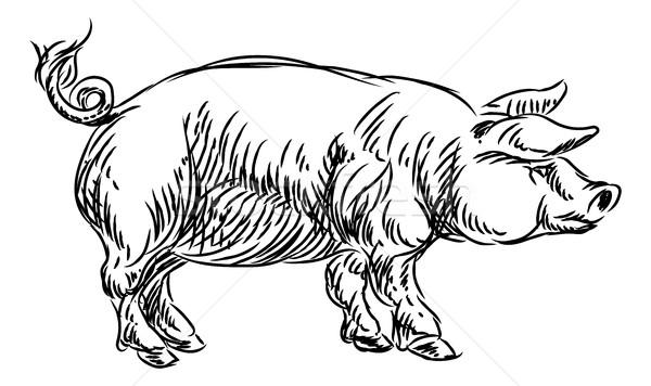 Porco carne de porco comida grunge estilo Foto stock © Krisdog