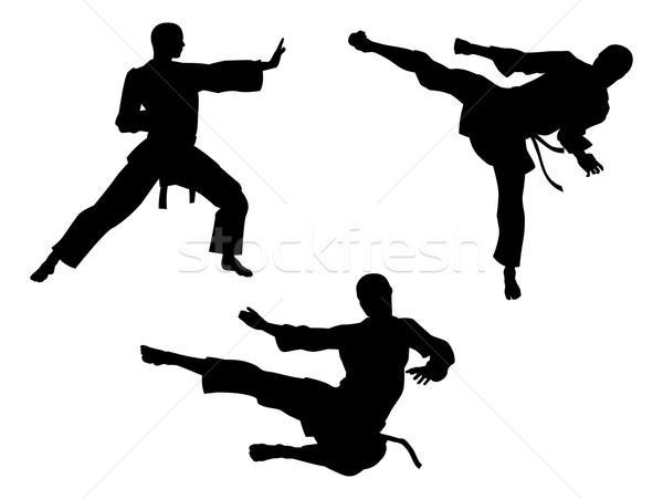 Karate Martial Art Silhouettes Stock photo © Krisdog