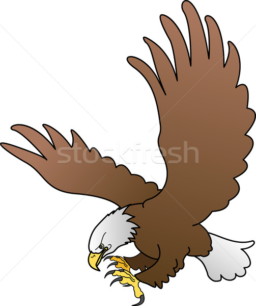 Illustration of bald eagle with spread wings Stock photo © Krisdog