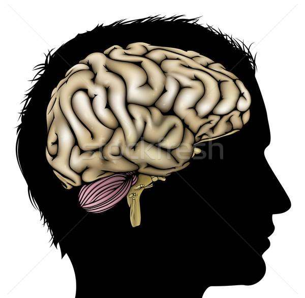 Man brain concept Stock photo © Krisdog