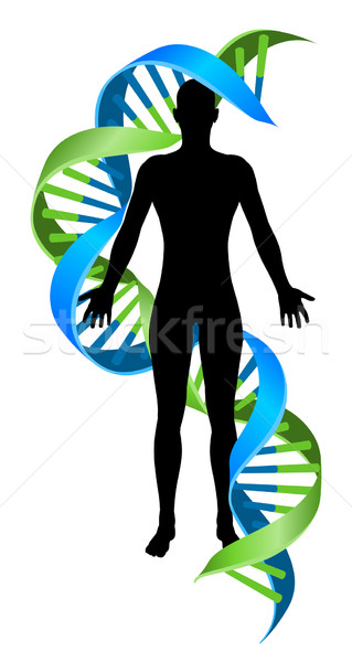 Double Helix DNA Chromosome Strand Human Figure Stock photo © Krisdog