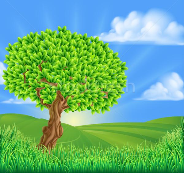 Stockfoto: Boom · heuvels · landschap · idyllisch · gras · zon
