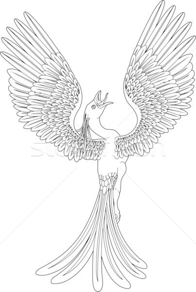Monochroom phoenix zwart wit pose vleugels ontwerp Stockfoto © Krisdog