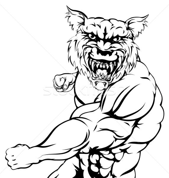 ストックフォト: オオカミ · スポーツ · マスコット · 厳しい · 動物 · 犬