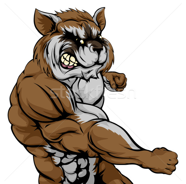 Punching raccoon mascot Stock photo © Krisdog