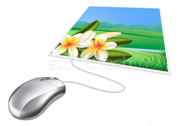 Mouse photo online internet concept Stock photo © Krisdog