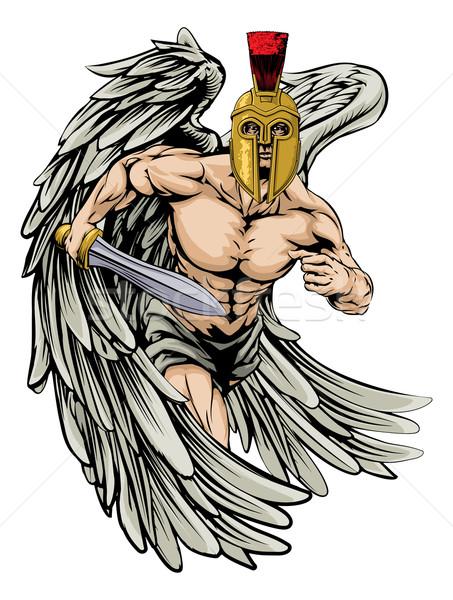 Anjo lutador ilustração guerreiro esportes Foto stock © Krisdog