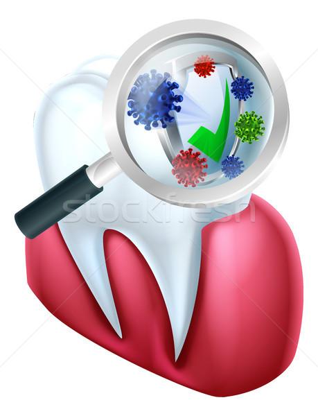 Tooth and Gum Protection Stock photo © Krisdog