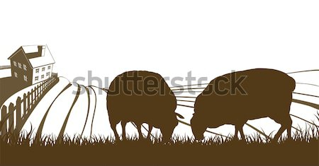 Stock photo: Cows and Farm Rolling Hills Landscape
