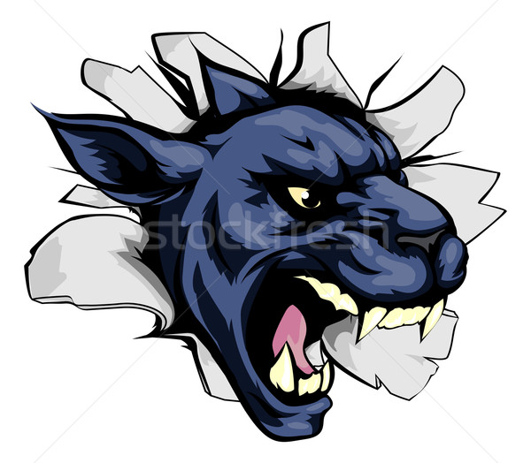 Stock photo: Panther sports mascot breakthrough