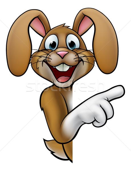 Rajz húsvéti nyuszi nyúl mutat körül felirat Stock fotó © Krisdog