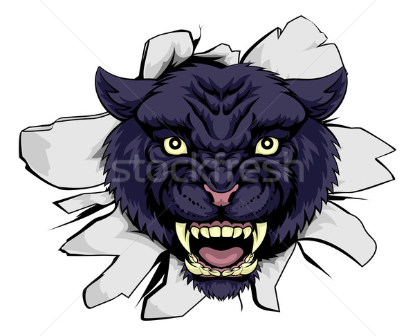 черный Panther спортивных талисман Cartoon бумаги Сток-фото © Krisdog