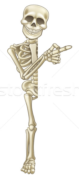 Skeleton Cartoon Pointing at Sign Stock photo © Krisdog