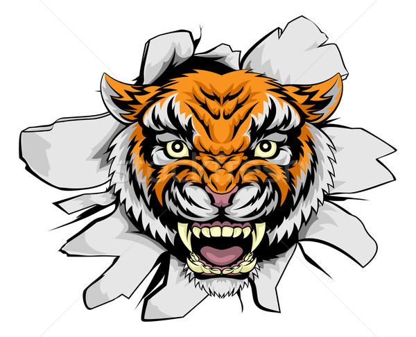 Tiger mascot ripping through Stock photo © Krisdog