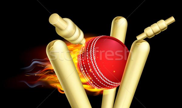 Chamejante críquete bola fogo madeira esportes Foto stock © Krisdog
