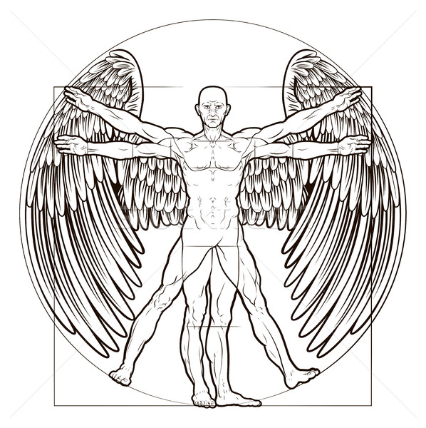Vitruvian Man Angel Stock photo © Krisdog