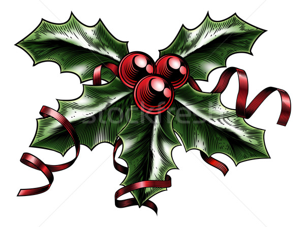 Vintage Christmas Holly Illustration Stock photo © Krisdog