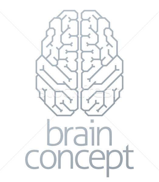 Brain Concept Top Stock photo © Krisdog