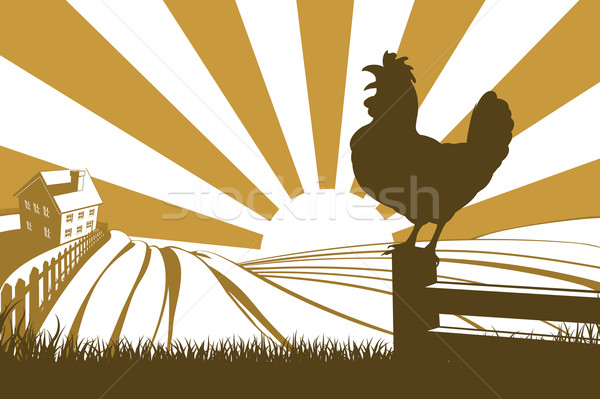 Rooster chicken silhouette crowing Stock photo © Krisdog