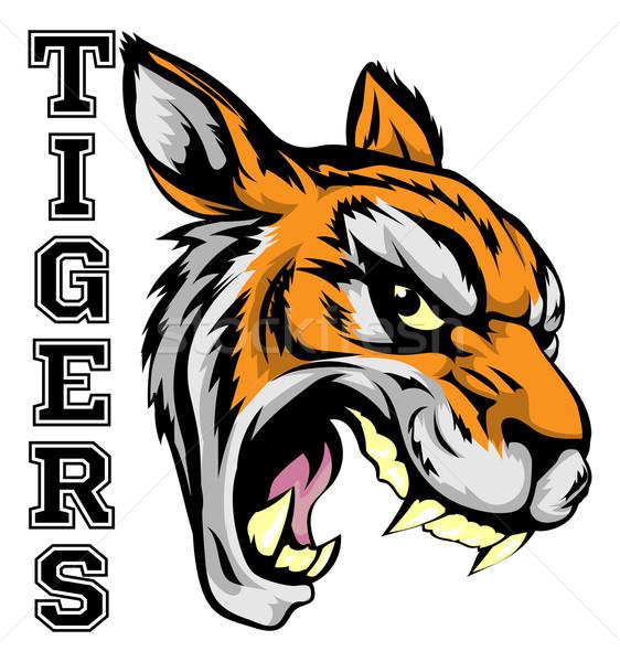 Tijgers sport mascotte illustratie tijger hoofd Stockfoto © Krisdog