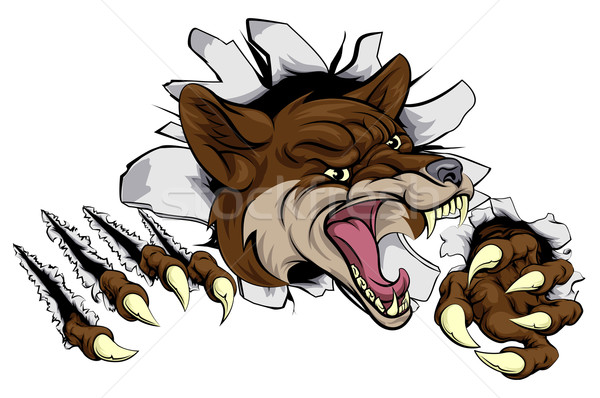 Coyote mascot ripping out Stock photo © Krisdog