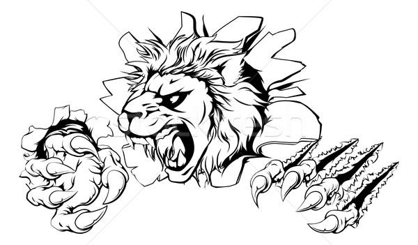 Lion clawing through wall Stock photo © Krisdog