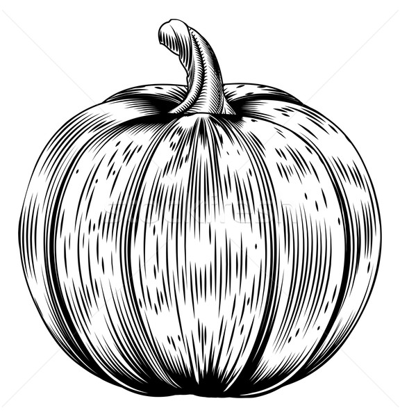 Vintage retro woodcut pumpkin Stock photo © Krisdog