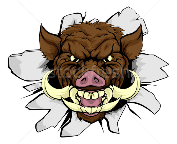 Boar Warthog Sports Mascot Stock photo © Krisdog