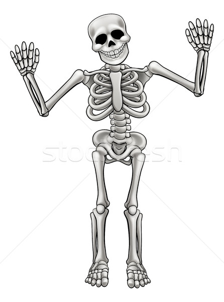 Cartoon Standing Skeleton Stock photo © Krisdog