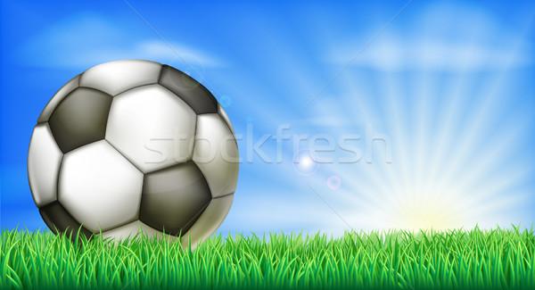 サッカー サッカー ボール ピッチ 緑の草 フィールド ストックフォト © Krisdog