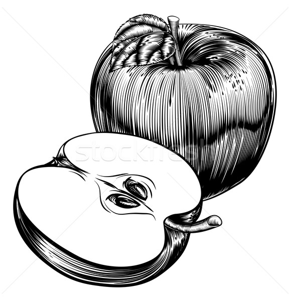 Vintage Woodcut Apples Stock photo © Krisdog