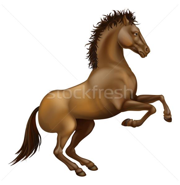 Rearing brown horse Stock photo © Krisdog